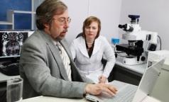 Томские ученые исследуют щадящий метод диагностики заболеваний мозга