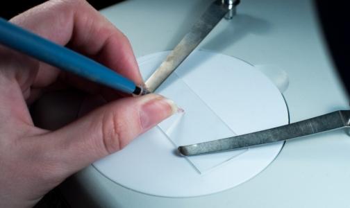 Студенты СПбГУ создали экспресс-тест на содержание в организме макроэлементов
