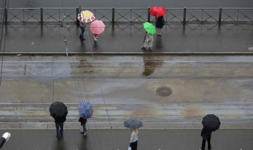 ЗСД помог Петербургу войти в десятку самых чистых городов России