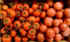 Помидоры из российских магазинов проверили на нитраты и пестициды