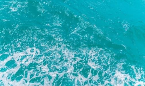 Правительство разрешило ввоз в Россию лечебной морской воды из Евросоюза