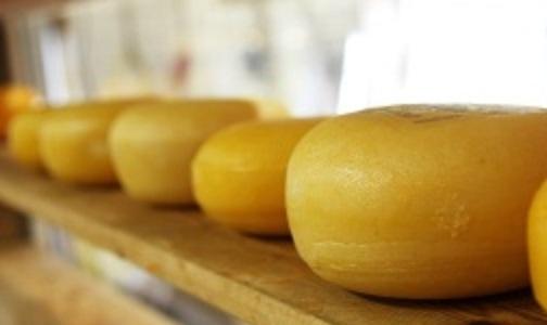 Роскачество нашло в «Российском» сыре антибиотики