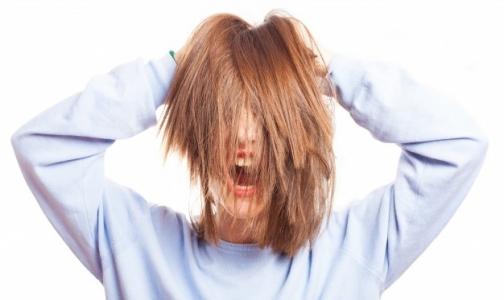 В этом году петербуржцев стали реже одолевать вши