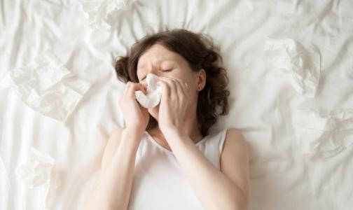 В Петербурге заработала «горячая линия» по гриппу