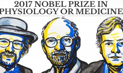 Названы победители Нобелевской премии по медицине-2017
