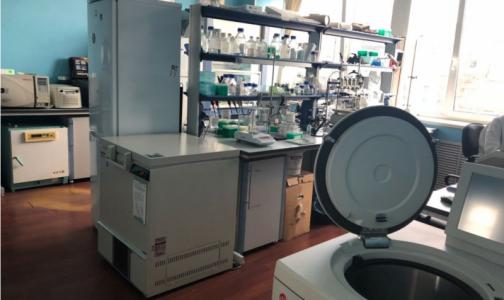 Прокуратура: Условия в диагностической лаборатории для животных оказались опасны для человека