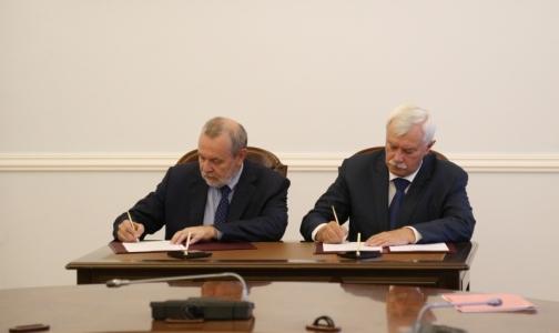 Мобильное приложение ФСС рассчитает петербуржцам пособие и пришлет социальное такси