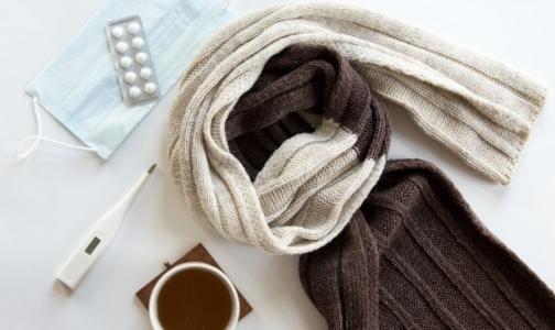 В Петербурге превышен эпидпорог заболеваемости гриппом
