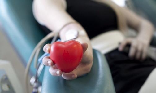 В новогодние праздники в Петербурге будут работать пункты службы крови