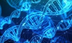 К 2025 году обещают генетическую паспортизацию всей страны