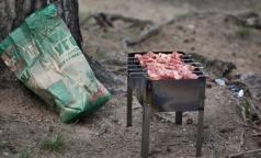 Роспотребнадзор рассказал, как безопасно приготовить шашлык на природе