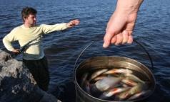 Роспотребнадзор рассказал, как надо готовить рыбу, чтобы не съесть живого паразита