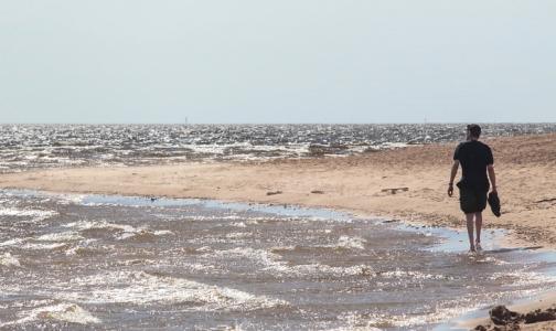 В Петербурге пригодной для купания признали воду на пяти пляжах
