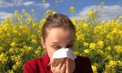 Социологи выявили самую распространенную аллергию у россиян