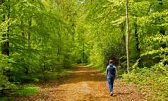 Природотерапия: Медики выяснили, сколько надо гулять, чтобы чувствовать себя лучше
