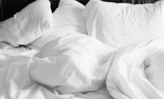 Роспотребнадзор: как уберечься от тропических постельных клопов, прижившихся в российских квартирах