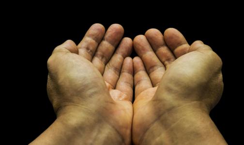 Эксперты рассказали, как отличить в соцсетях фальшивых благотворителей от настоящих