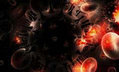 Ученые: личинки плоских червей-паразитов защищают от ВИЧ