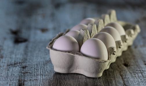 Общественники протестировали яйца - искали сальмонеллу и антибиотики