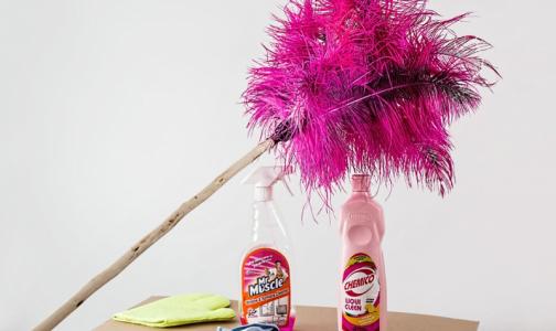 Эксперты назвали пять способов сделать уборку в доме без использования бытовой химии