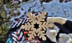 Петербургские врачи: От теплой и бесснежной зимы неприятных сюрпризов не ждем