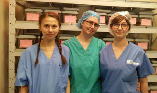 Петербургские ученые ищут подтверждение аутоиммунной природы саркоидоза
