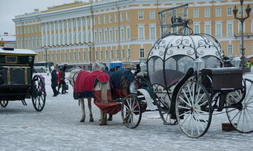 Петербург и Ленобласть переходят на режим повышенной готовности из-за коронавируса