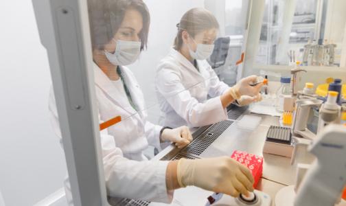 Петербургская фармкомпания обещает в апреле начать испытания вакцины от Covid-2019