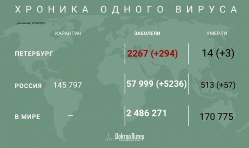 За сутки у почти 300 петербуржцев выявили коронавирус, трое умерли