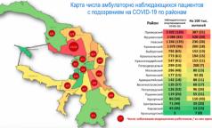 В Петербурге создали карту распространения коронавируса по районам