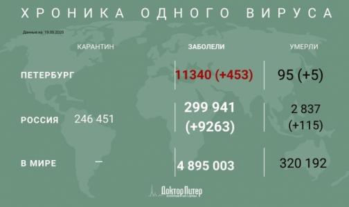 За сутки коронавирус выявили у 453 петербуржцев