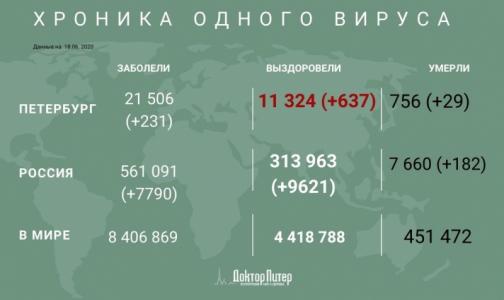 В Петербурге за сутки выявили 231 новый случай заражения коронавирусом
