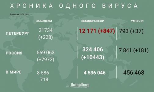 За сутки в России выявлено 7 972 новых случая заражения коронавирусом