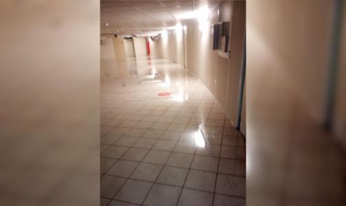Боткинская больница ответила за потоп: Заливает регулярно из-за недоделок при строительстве