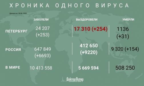Число заразившихся коронавирусом петербуржцев превысило 24 тысячи