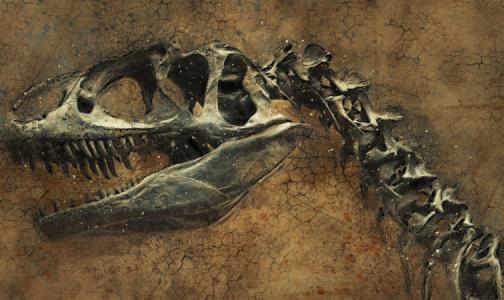 Ученые впервые нашли злокачественную опухоль у динозавра, жившего 76 миллионов лет назад