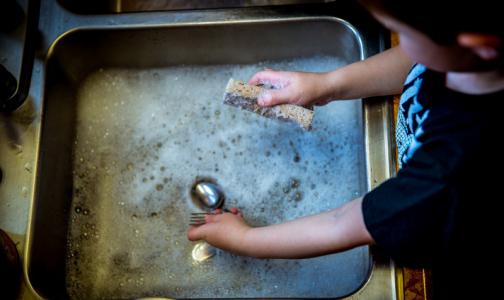 В Роспотребнадзоре назвали главный рассадник бактерий на кухне