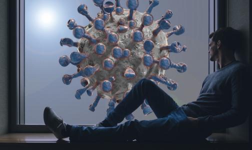 Минздрав: Спустя пять недель после выздоровления количество антител к коронавирусу снижается вдвое