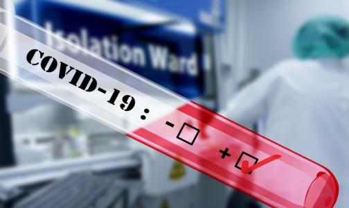 Число заразившихся коронавирусом петербуржцев превысило 39 тысяч