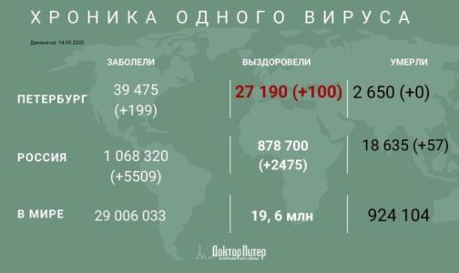 Заболеваемость коронавирусом в Петербурге за сутки снизилась - его выявили у 199 человек