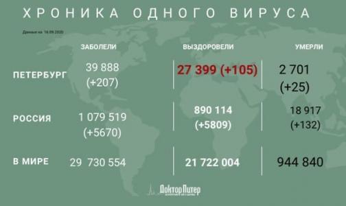 За сутки у 207 жителей Петербурга выявили коронавирус
