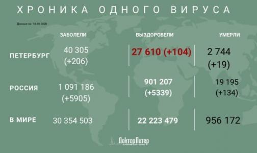 За сутки у 206 петербуржцев выявили коронавирусную инфекцию