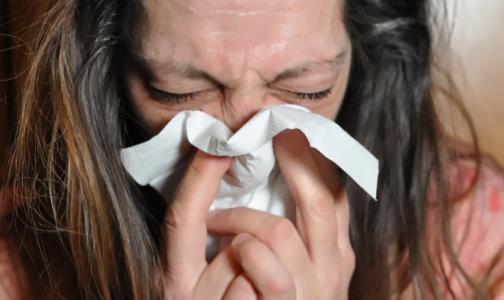 У петербуржцев выявляют ОРВИ без гриппа: риновирусы, парагрипп и аденовирусы
