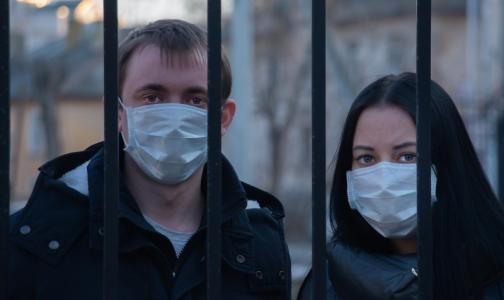Новый год без дискотеки. По каким правилам будет жить Петербург до 15 января