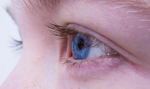 Можно ли «починить» сломанный ген, приводящий к слепоте? Общественная организация объявила о сборе средств на исследование