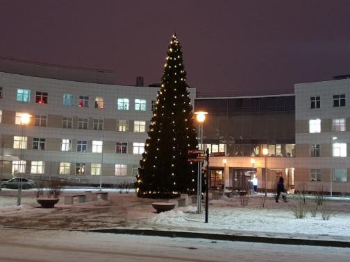 Эпидемия не отменяет Новый год. В больницах Петербурга нарядили елки