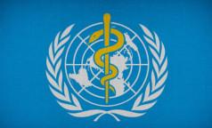 Послали в ВОЗ. Специалисты международной медицинской организации оценят новосибирскую «ЭпиВакКорону»