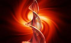 Учёные США обнаружили у человека ген, увеличивающий в два раза риск развития рака
