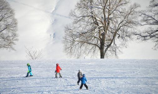В новогодние каникулы десятки петербуржцев получили травмы от петард, гололеда и ватрушек