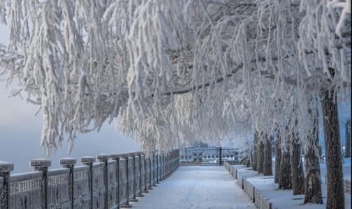 Врачи посоветовали, как избежать обморожений в сильные морозы